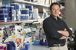 Alysson Muotri is seen in his UC San Diego lab in this undated photo.
