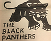 Trump Presidency Inspires Reactivation Of San Diego Black Panther P...