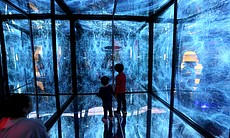 Children inside the Birch Aquarium's Infinity C...