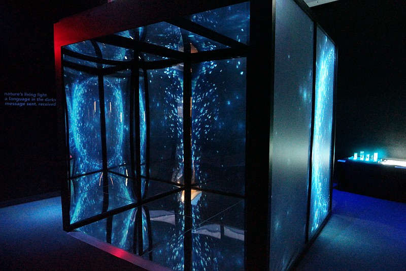 The Birch Aquarium's Infinity Cube, in an undat...