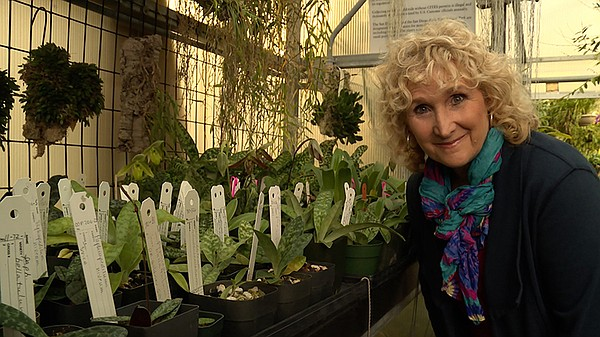 Host Nan Sterman in the orchid house.