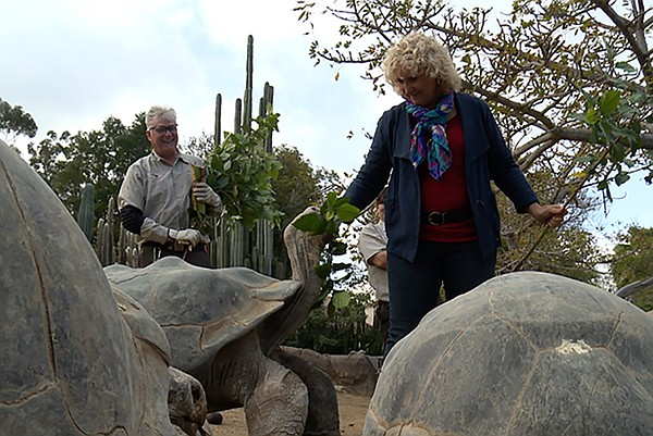 Host Nan Sterman (right) feeds a tortoise.