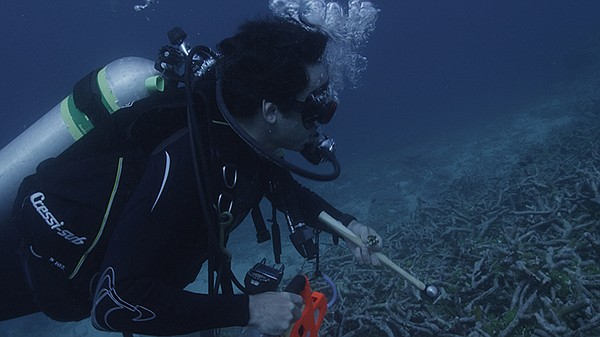 David Gruber collecting specimens underwater.
