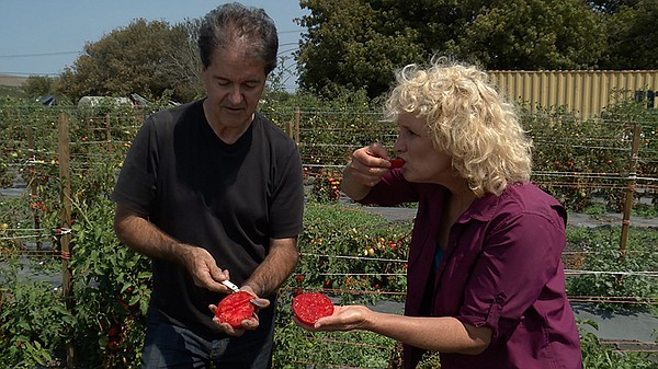 Host Nan Sterman and Doug Heath, senior tomato breeder at...
