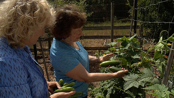 Host Nan Sterman and Renee Shepherd of Renee's Garden See...
