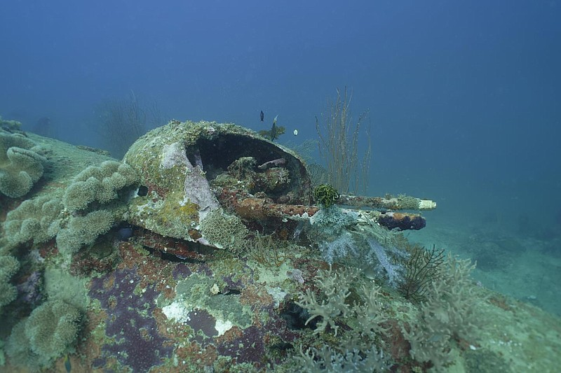 The gun turret of a downed B-25 bomber recently found off the coast of Papua ...