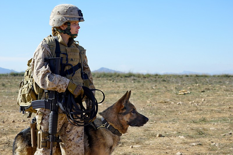 I'd Rather Be With My Dog » K9 Veteran Care Package - I'd Rather ...