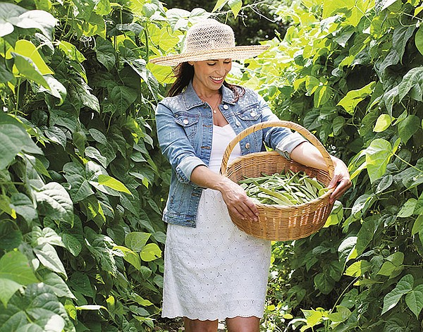 Julie Taboulie picking beans in Mama's Glorious Garden.