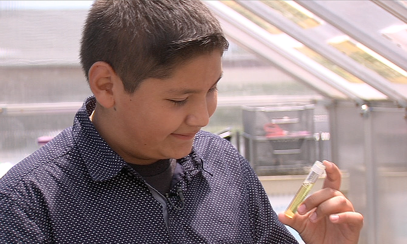 David Mendoza, 12, checks water for ammonia in an aquaponics greenhouse at Mo...