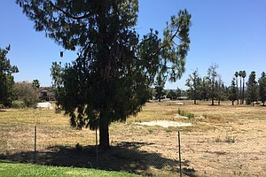 Photo for Escondido Golf Course Saga Ends Up Back Before City Council