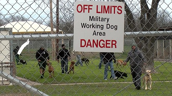 Trainers and dogs behind a fence with a sign that reads
