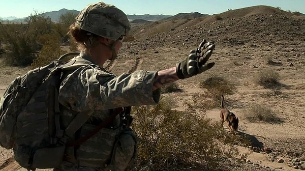 A soldier and her dog search for explosives. Military wor...