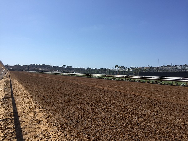 The new surface at the Del Mar racetrack. The Thoroughbred Club has spent $15...