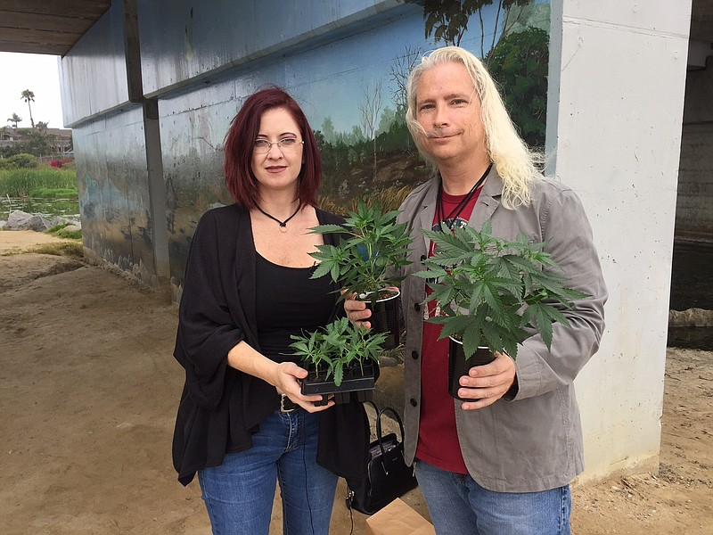 David and Amber Newman, owners of medicinal marijuana grower A Soothing Seed ...