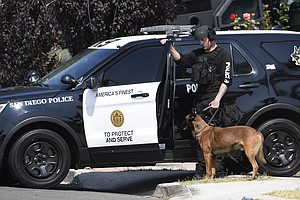 SDPD Releases Statistics On Bites By Police Canines In Wa...