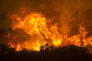 Deadly Wild Fires Burn In California Wine Country