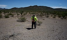 Ely Ortiz, the founder and leader of Aguilas Del Desierto, scans the desert n...