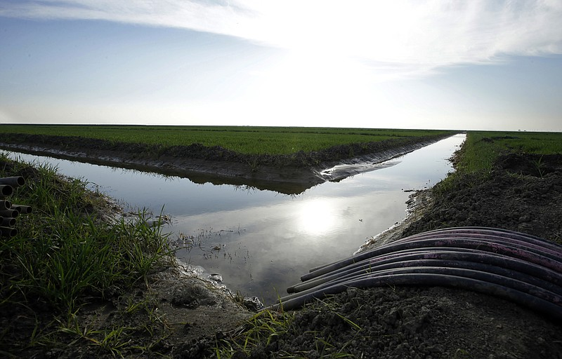 Water flows through an irrigation canal to crops near Lemoore, Calif., Feb. 2...
