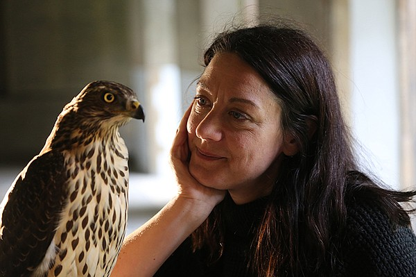 Helen Macdonald with goshawk at Jesus College, Cambridge, England.