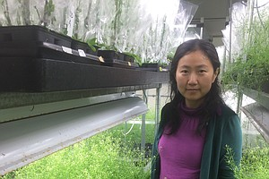 'Rad Scientist' Episode 2: Liang Song Puts Herself Into The 'Shoes' Of Plants