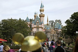 Photo for International Traveler With Measles Visited Disneyland