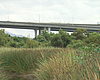 Increased Homeless Population Along San Diego River Hampe...