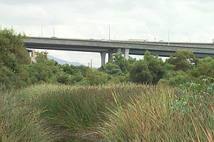 Photo for City Officials Announce Effort To Clean Up San Diego River