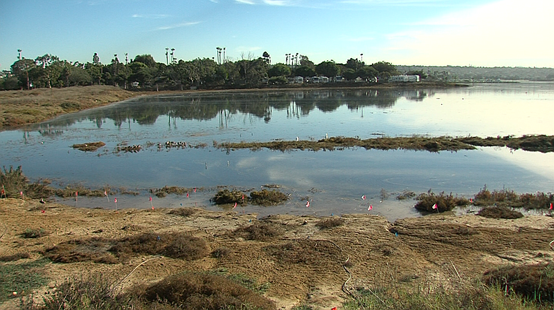 Kendall-Frost reserve is flooded as King tides move in.  The reserve could be...