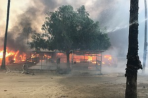 Photo for Horses Evacuated During Wildfire Return To San Diego Stables