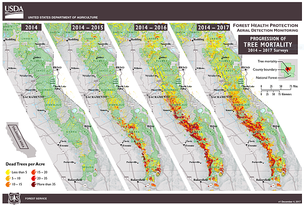 These maps show the progression of tree mortality across California from 2014...