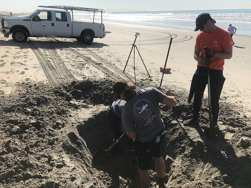 Researchers from Scripps Institution of Oceanography dig a hole in Coronado's...