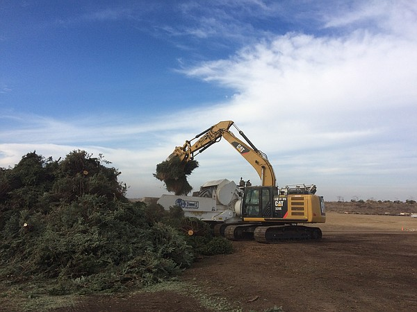 A wood chipper at the Miramar Greenery processes Christma...