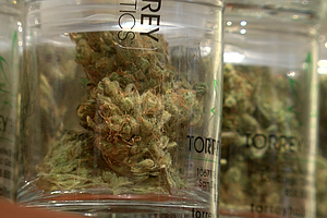 Chula Vista Moves Into The Marijuana Business