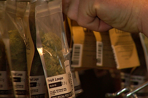 Photo for Marijuana Businesses Are Legal — But Darn Near Impossible To Open In San Diego