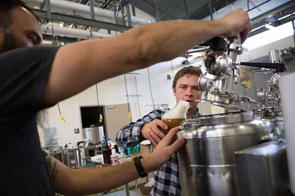 Charles Denby pours one of his GMO yeast solutions into a...