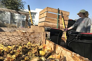 Photo for San Diego Opens Door To Small-Scale Community Composting