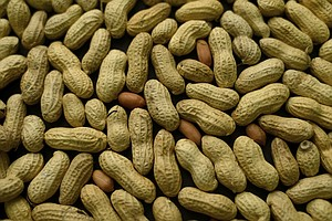 Preventive Treatment For Peanut Allergies Succeeds In Study