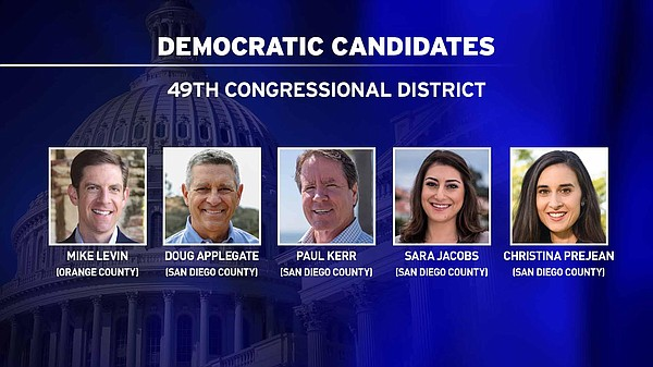 The Democratic candidates running for Darrell Issa's seat...