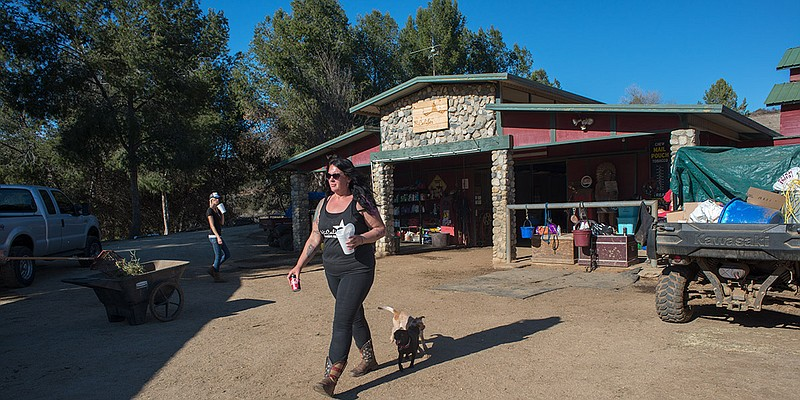 Michelle Knuttila, HiCaliber Horse Rescue's founder, walks the ranch on March...