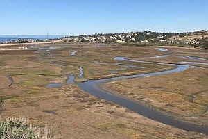 San Elijo Lagoon Project Helps Habitat And Benefits The B...