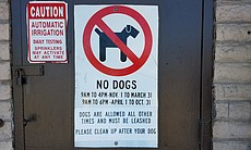 A sign in Mission Bay explains when dogs are no...