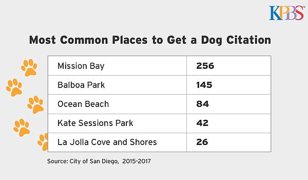 A list of the most common places to get a dog citation is...