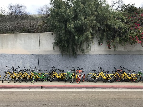Dockless shared bikes crows the sidewalk of State Street ...