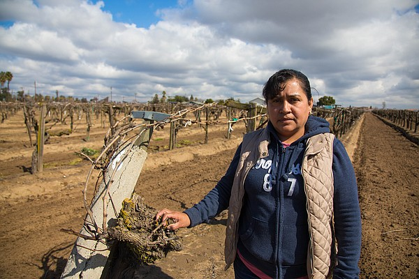 Alma, emigrated from the Mexican state of Oaxaca, stands ...