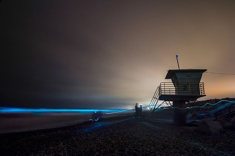 Bioluminescence from a red tide lights the waves blue in San Diego in this un...
