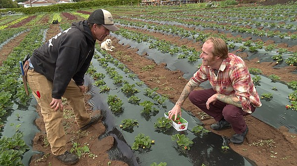 Farmer Luke Girling from Cyclops Farms with and Davin Wai...