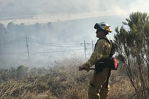 Photo for Brushfire In Del Cerro Now 100 Percent Contained, 'Likely Started By Juveniles'