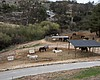 HiCaliber Horse Rescue's Valley Center property...