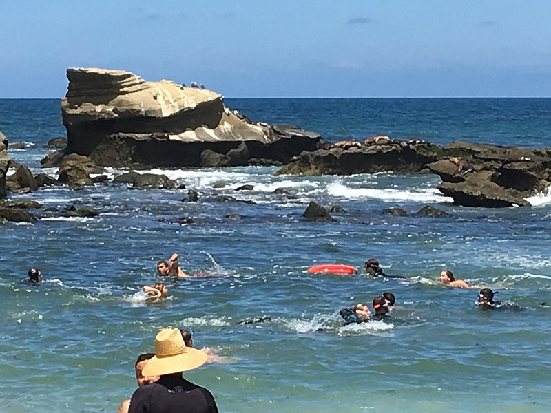 People swimming at the beach in La Jolla Cove, Sunday, July 22, 2018.