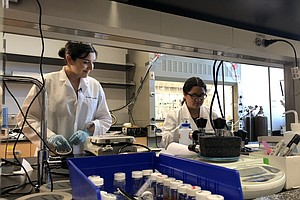 UC San Diego Science Program Unites Students From Both Si...